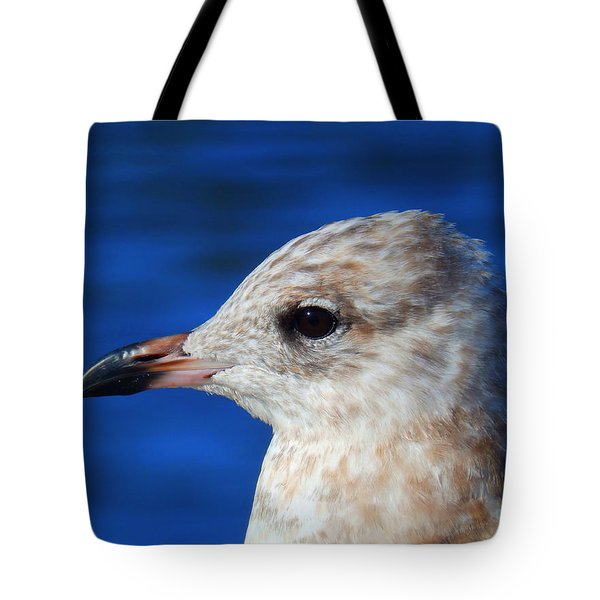 Gaze Tote Bag