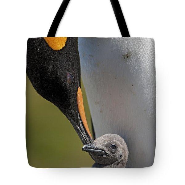 King Penguin Aptenodytes Patagonicus Tote Bag by Ingo Arndt