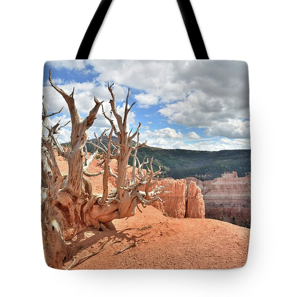 On The Edge Tote Bag