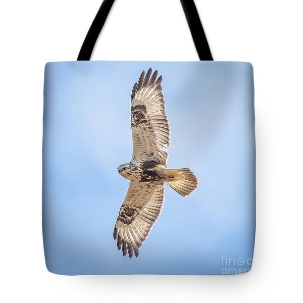 Rough-legged Hawk Tote Bag