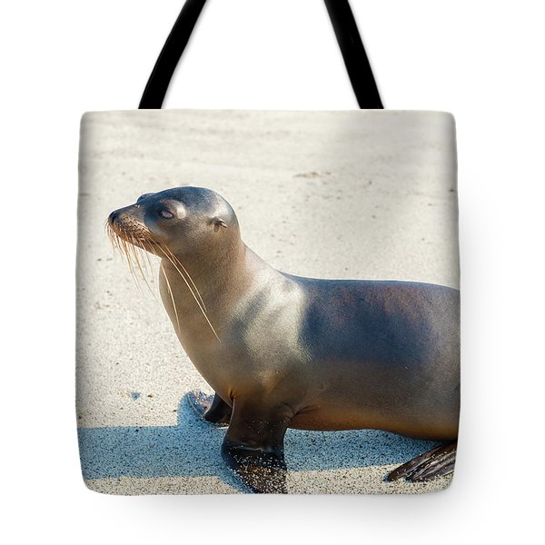 Sea Lion In Galapagos Islands Tote Bag