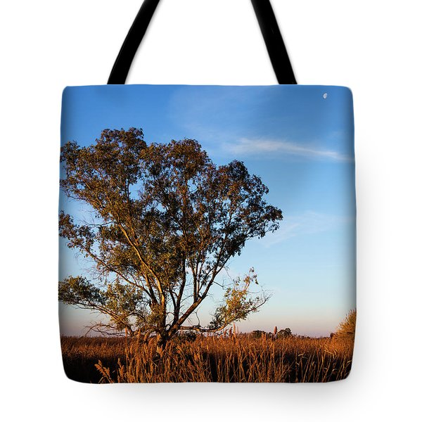 Sunrise In The Ditch Burlamacca Tote Bag