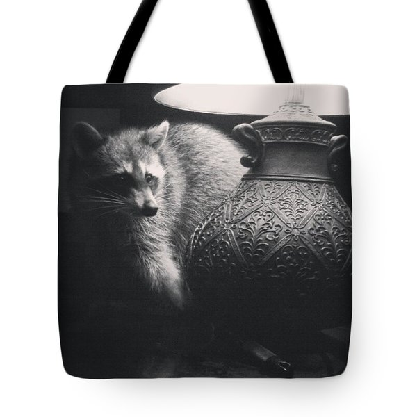 Crazy Coon  Tote Bag