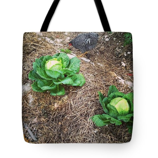 Chicken And Cabbage Tote Bag
