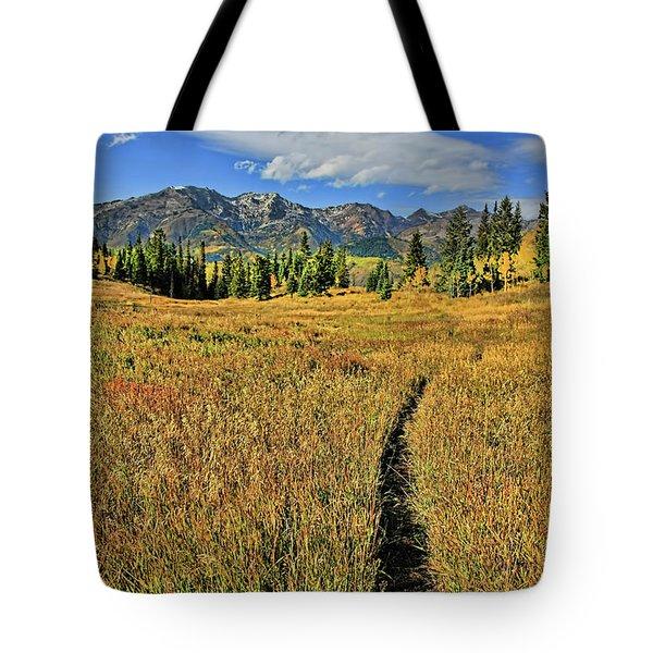 Rocky Mountain Fall Tote Bag