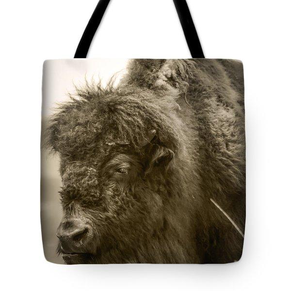#6389 - The Traveler Tote Bag