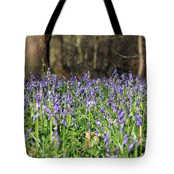 Bluebells At Banstead Wood Surrey Uk Tote Bag