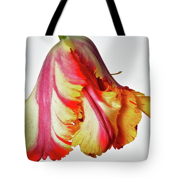 French Tulip Tote Bag