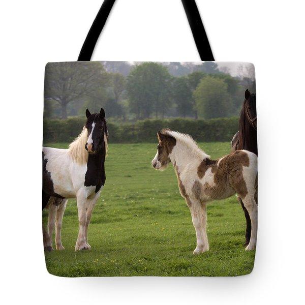 Irish Cobs Tote Bag by Angel  Tarantella