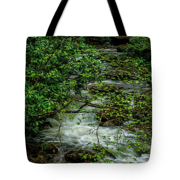 Tote Bag featuring the photograph Kens Creek Cranberry Wilderness by Thomas R Fletcher