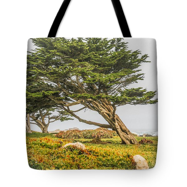 #7803 - Monterey, California Tote Bag