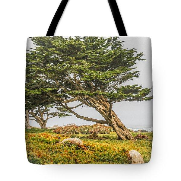 #7803 - Monterey, California Tote Bag