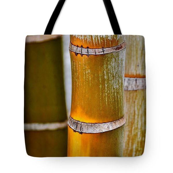 Tote Bag featuring the photograph Bamboo Palm by Werner Lehmann
