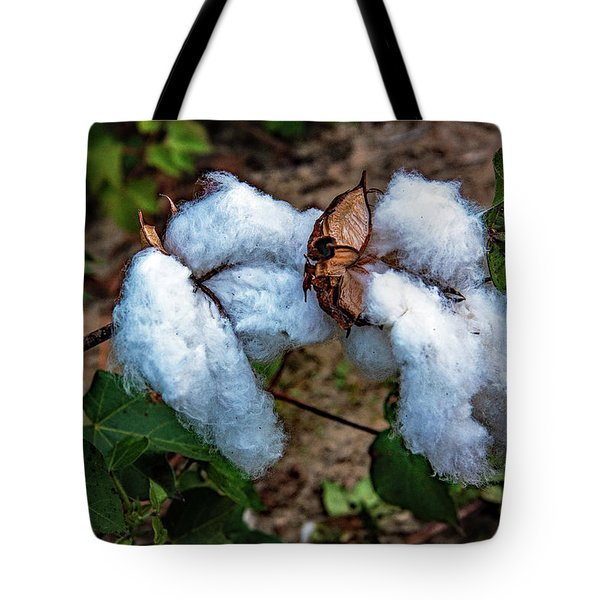 8 Bolls Of Cotton  Tote Bag