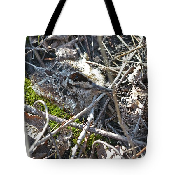 8 Days Old American Woodcock Chick Tote Bag