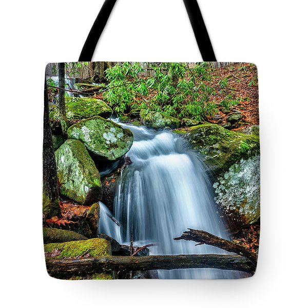 Tote Bag featuring the photograph Little Laurel Branch by Thomas R Fletcher