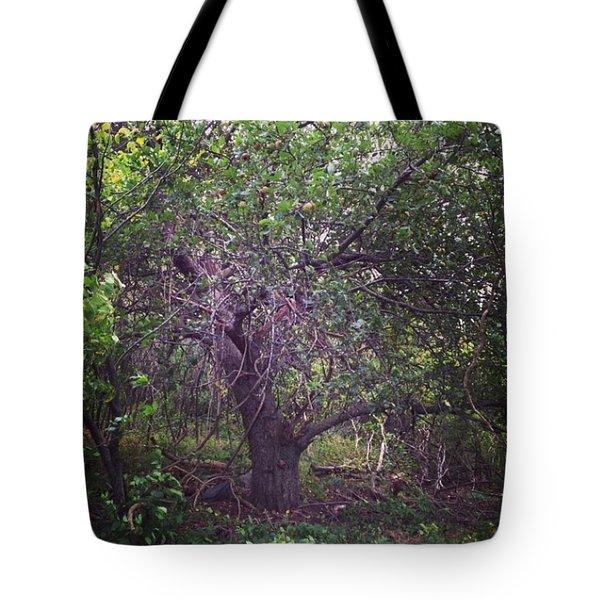Forgotten Apple Tote Bag