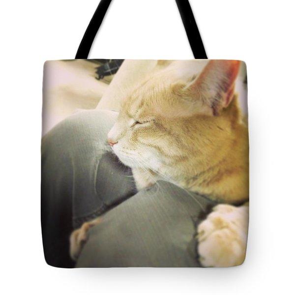 Furry Friend #2 Tote Bag