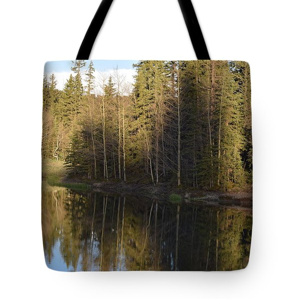 Shadow Reflection Kiddie Pond Divide Co Tote Bag