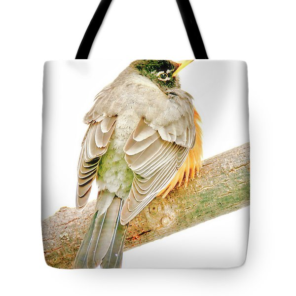 American Robin Male, Animal Portrait Tote Bag