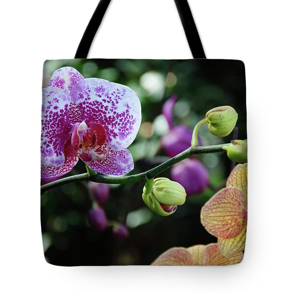 Butterfly Orchid Flowers Tote Bag