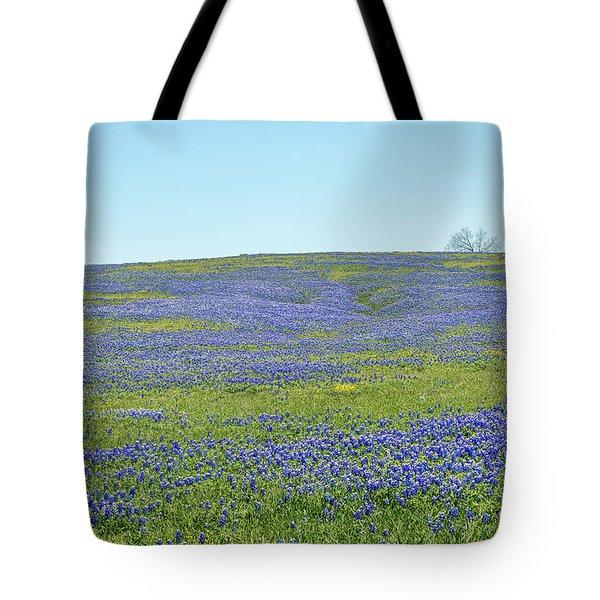 Texas Bluebonnets 12 Tote Bag