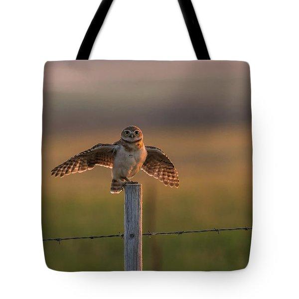 A Balancing Act Tote Bag