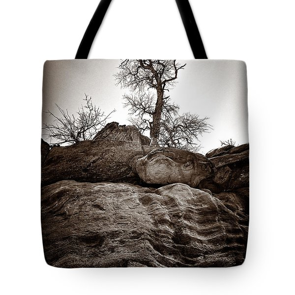 A Barren Perch - Sepia Tote Bag by Christopher Holmes
