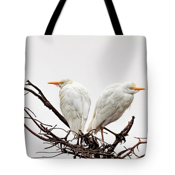 A Basket Of Anger Tote Bag by Cyndy Doty
