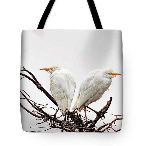 A Basket Of Anger Tote Bag