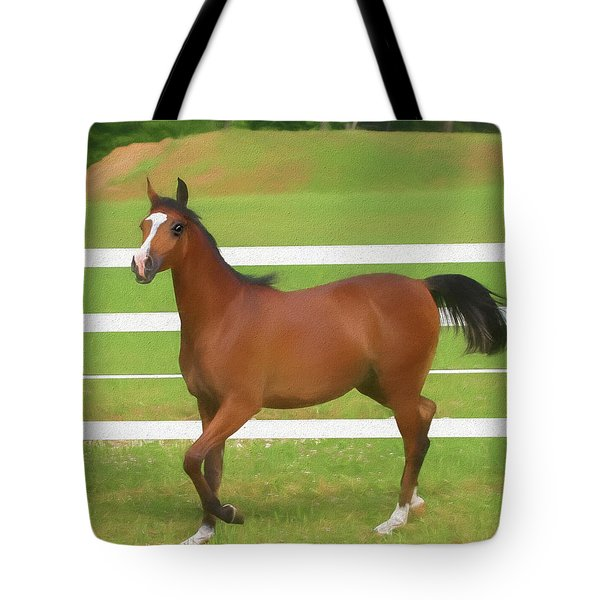 A Beautiful Arabian Filly In The Pasture. Tote Bag