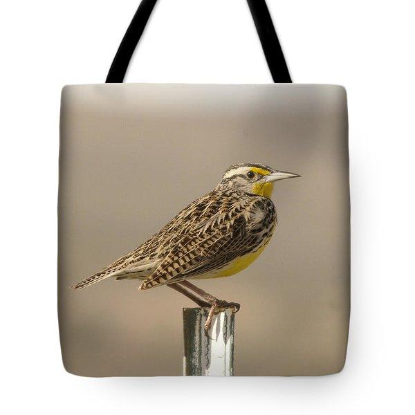 A Beautiful Meadowlark Tote Bag