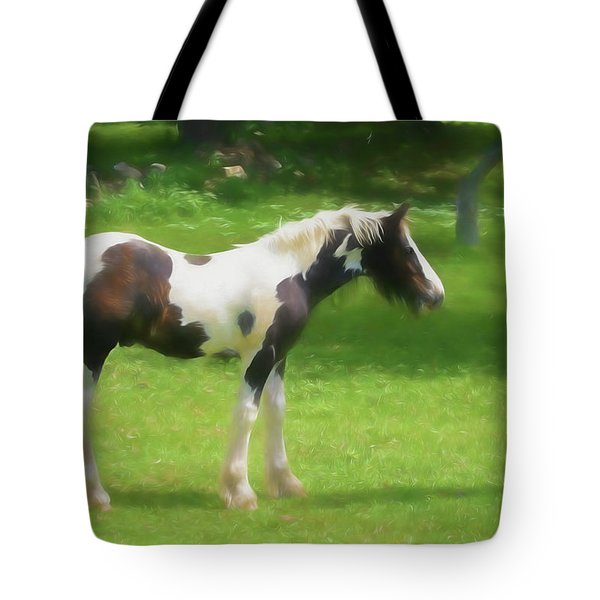 A Beautiful Young Gypsy Vanner Standing In The Pasture Tote Bag