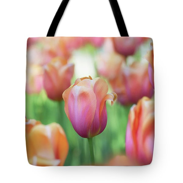 A Bed Of Tulips Is A Feast For The Eyes. Tote Bag