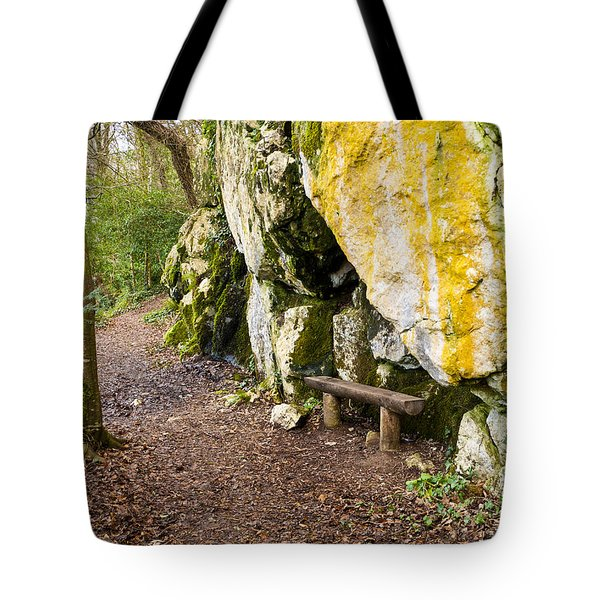 A Bench In The Woods Tote Bag by Rae Tucker