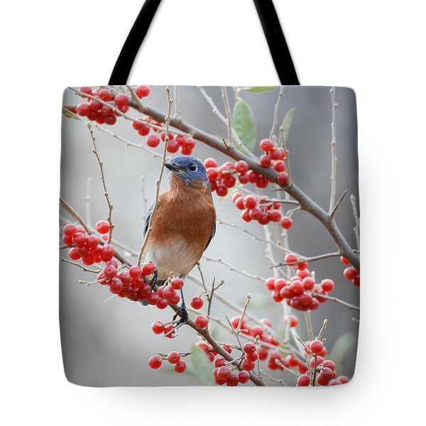 A Berry Good Morning Tote Bag by Amy Porter