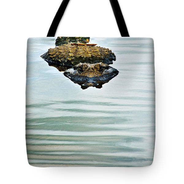 A Bit Of Curiosity Tote Bag by Christopher Holmes