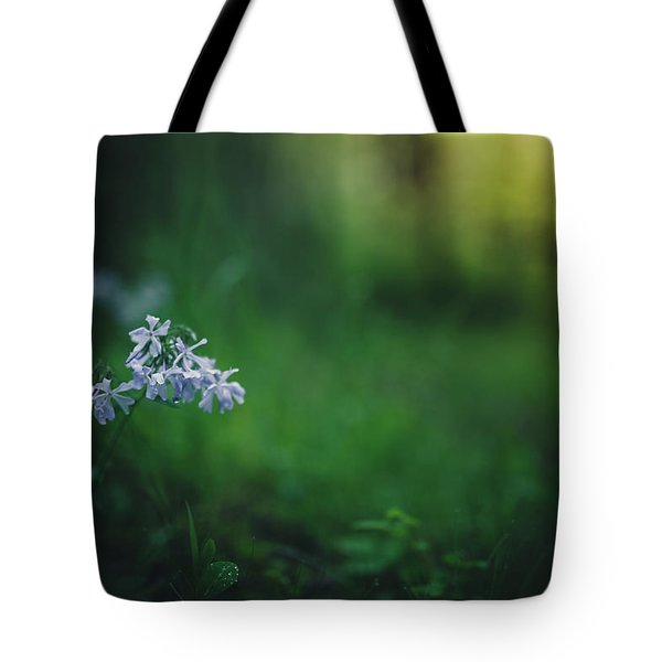 Tote Bag featuring the photograph A Bit Of Forest Magic by Shane Holsclaw