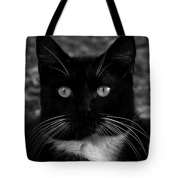 A Black Cat's Life -florida Tote Bag