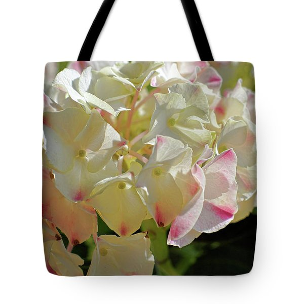 Tote Bag featuring the photograph A Blush Of Pink by Cricket Hackmann