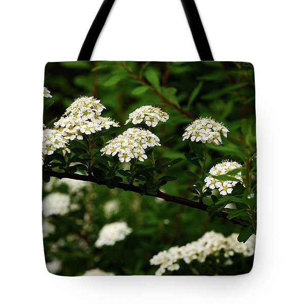 A Bridge To The Valley Of Lilies Tote Bag by Wanda Brandon