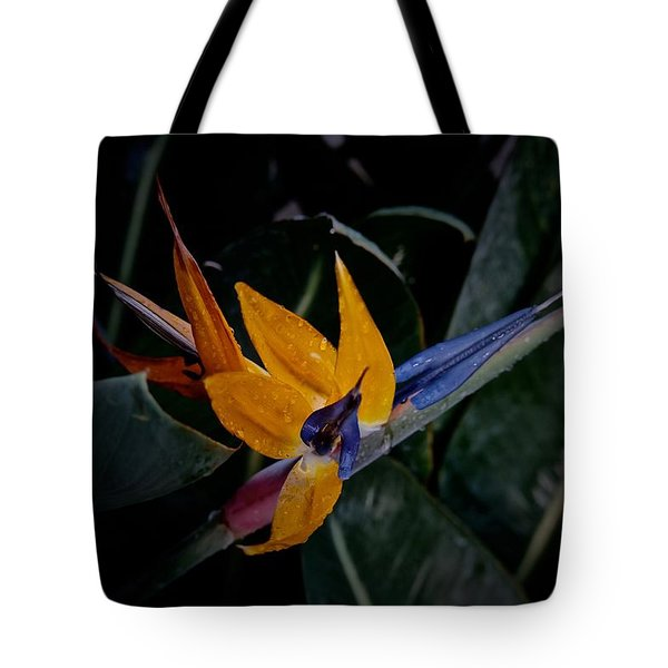 A Bright Blooming Bird Tote Bag