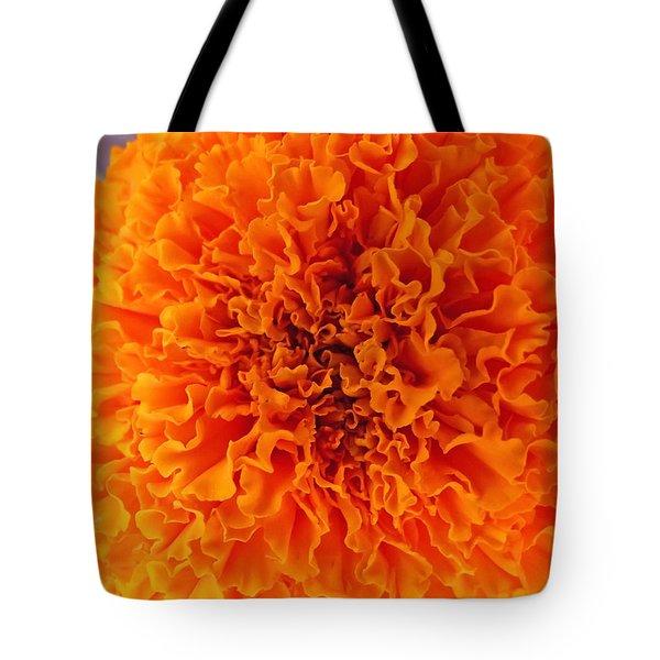 A Burst Of Orange Tote Bag