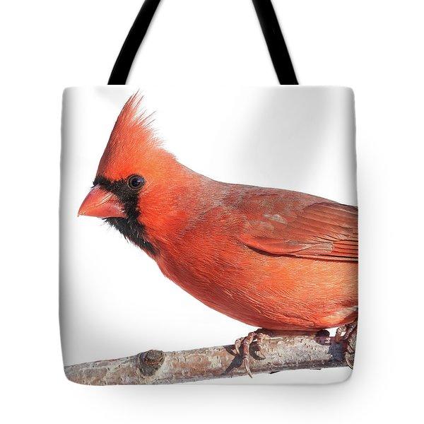 A Cardinal Says Good Morning Tote Bag