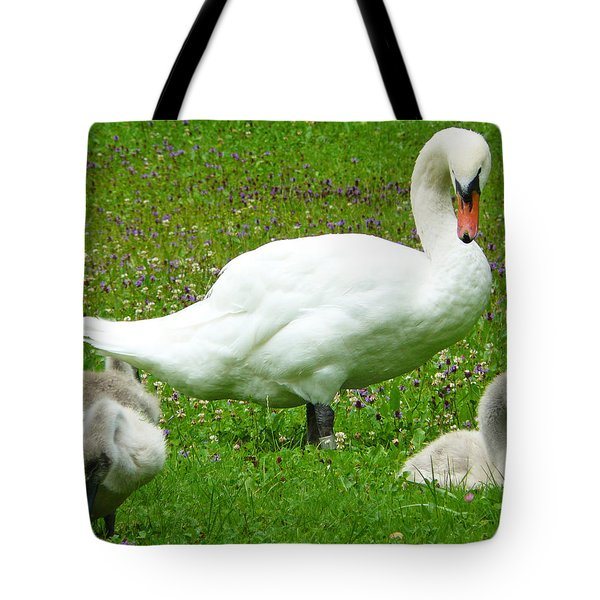 A Caring Mother Tote Bag by Daniel Csoka