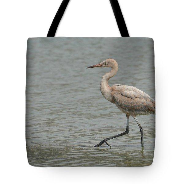 A Casual Stroll Tote Bag