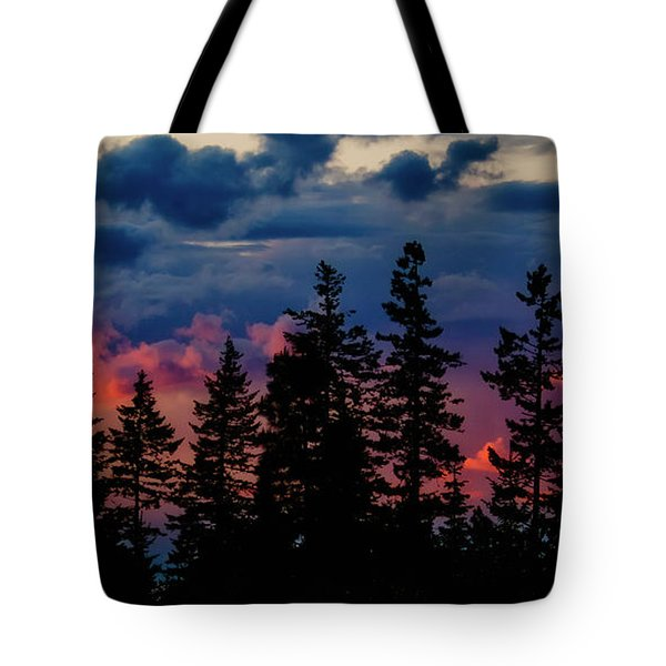 A Chance Of Thundershowers Tote Bag by Albert Seger