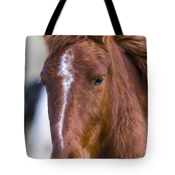 A Chestnut Horse Portrait Tote Bag