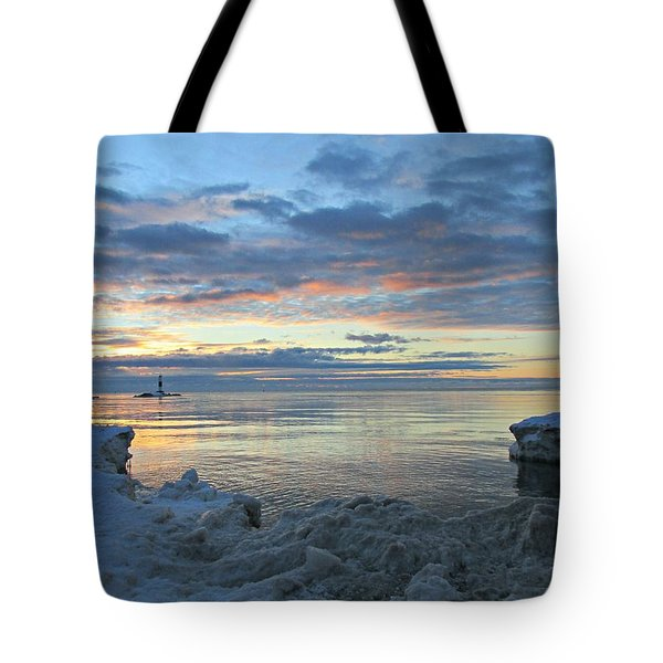 Tote Bag featuring the photograph A Chilly View by Greta Larson Photography