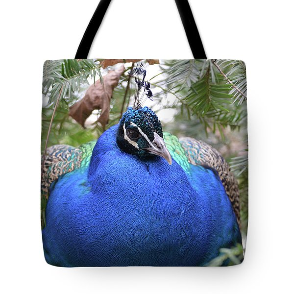 A Close Up Look At A Blue Peafowl Tote Bag